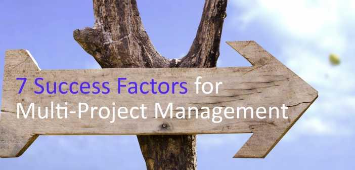 7 Success Factors for Multi-Project Management