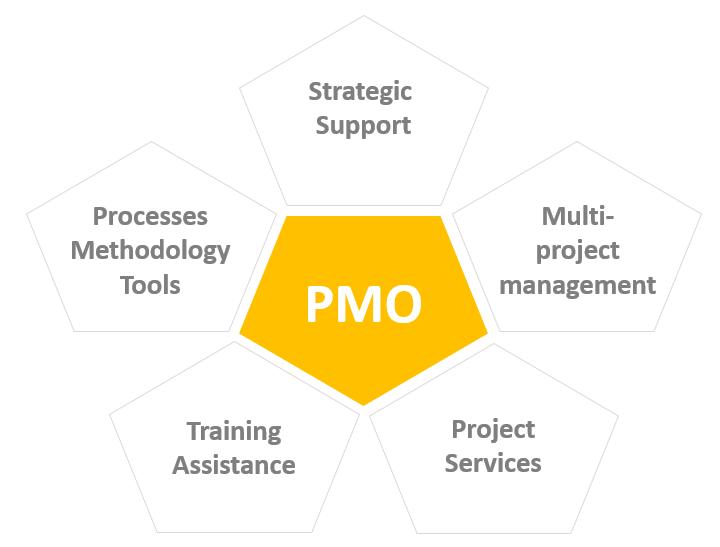 establishing a PMO