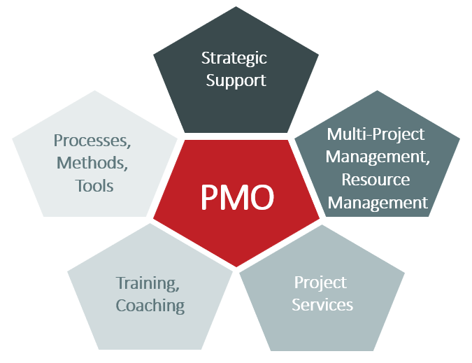 PMO survey 2020 TPG The Project Group