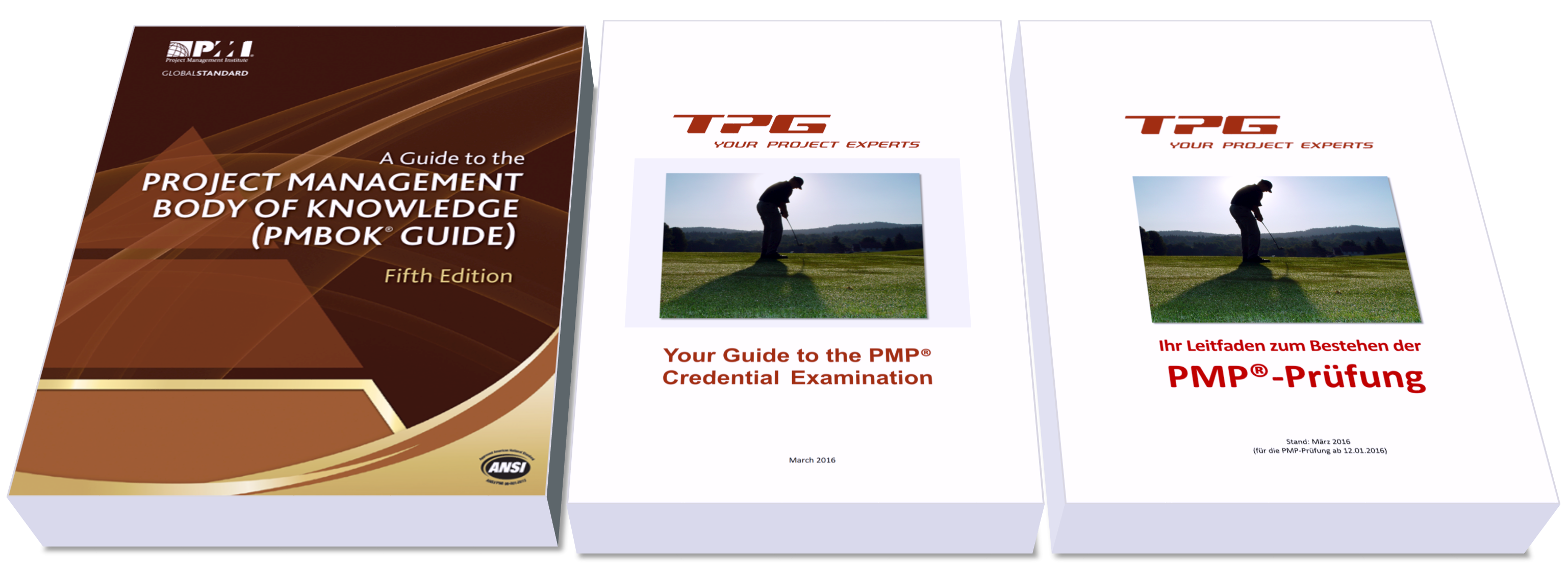 PMBOK Guide + Handouts: PMP-Zertifizierung im internationalen Umfeld