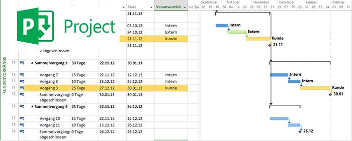 Microsoft project ansichten anpassen und speichern for Xls fenster fixieren