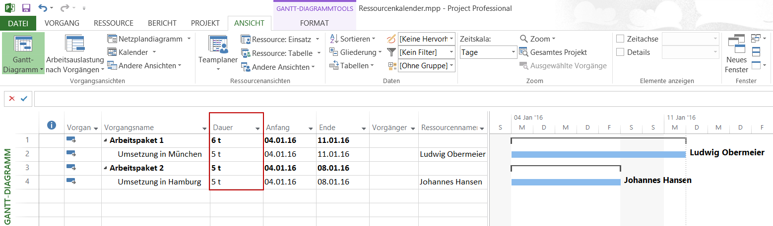 Ressourcenkalender in Microsoft Project
