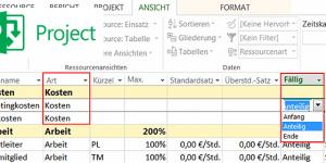 MS Project Fälligkeit der Kosten manuell verteilen