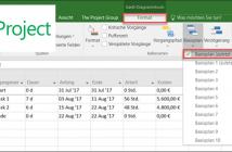 Basisplan-Optionen in MS Project