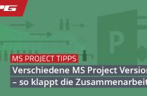 Header verschiedene MS Project Versionen