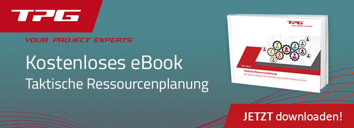 eBook Taktische Ressourcenplanung