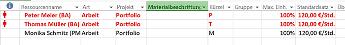 Multiprojektmanagement ohne Microsoft Project Server Bild 2