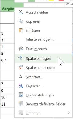 Datumswerte in Microsoft Project