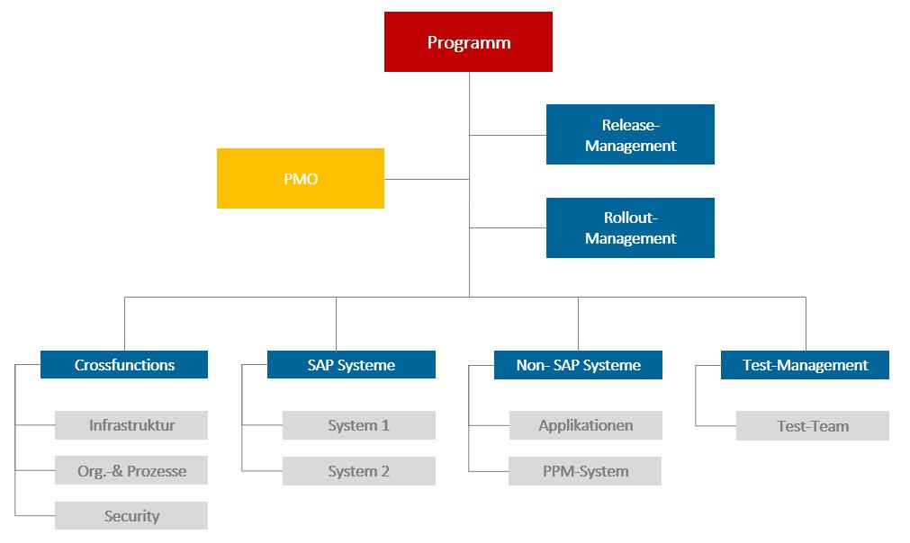 Erfolgreiches Programmmanagement